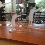 Trophée plexi 8 mm socle 10mm